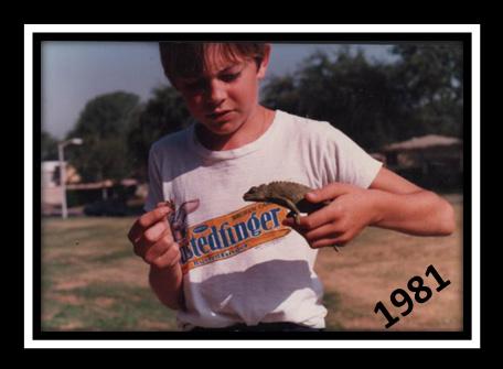 Bill-Chameleon-History