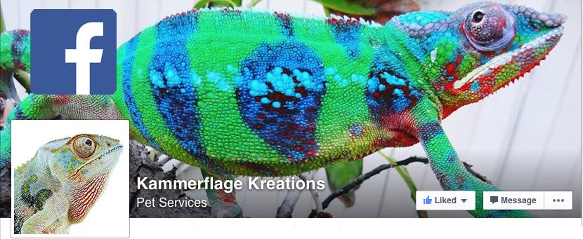 Kammerflage Facebook