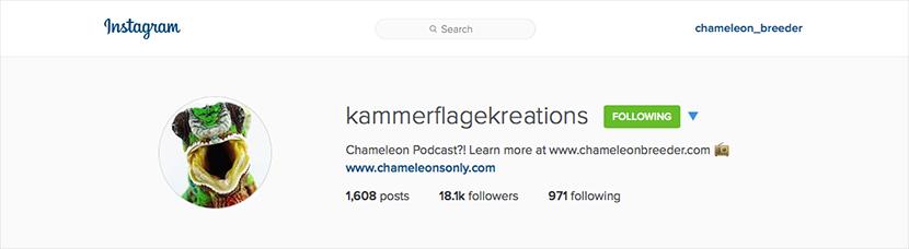Kammerflage Instagram