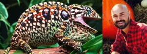 Carpet Chameleons with Kevin Stanford