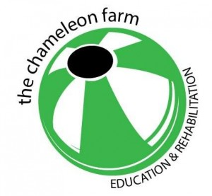 The Chameleon Farm