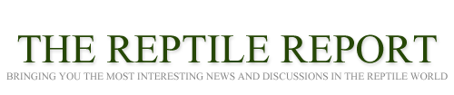 The Reptile Report logo
