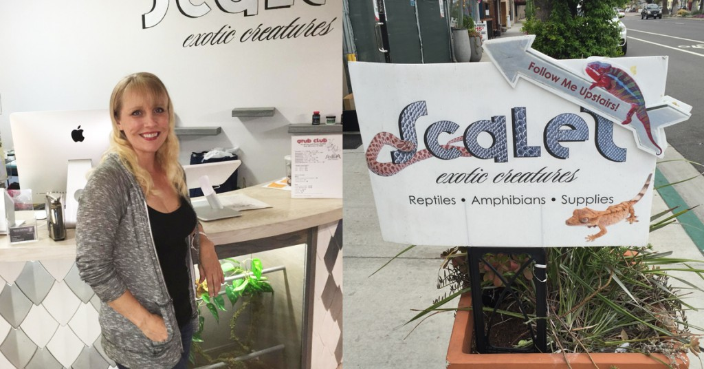 Scales Pet Store