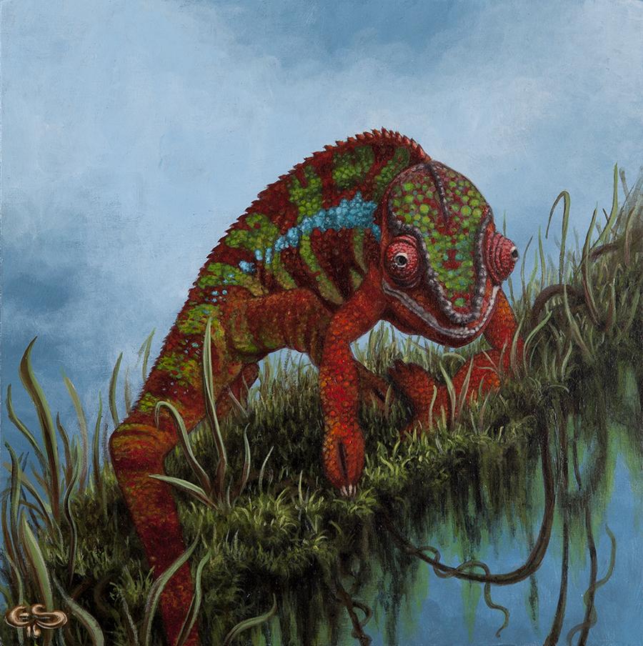 panther chameleon Evan Skredersku