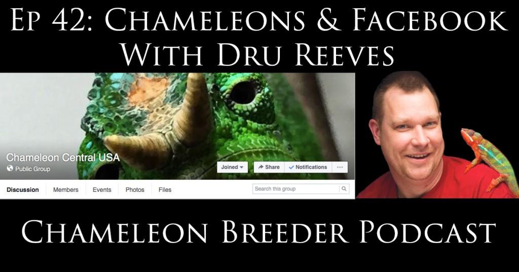 Chameleons and Facebook