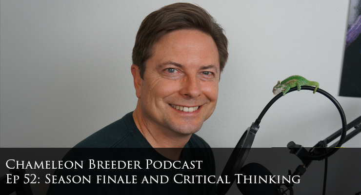 Bill Strand Chameleon Breeder Podcast