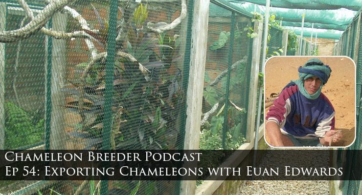 Exporting Chameleons