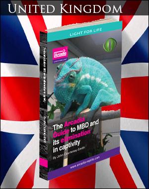 MBD in Chameleons UK