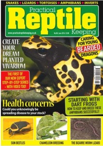 Issue 88 of Practical Reptile Keeping Magazine