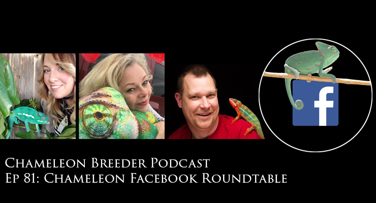Chameleon Facebook Roundtable Discussion