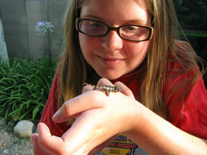 Jacksons Chameleon and girl