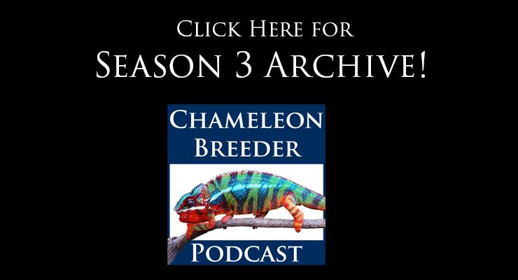 chameleon breeder podcast