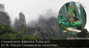 Veiled Chameleon Lighting