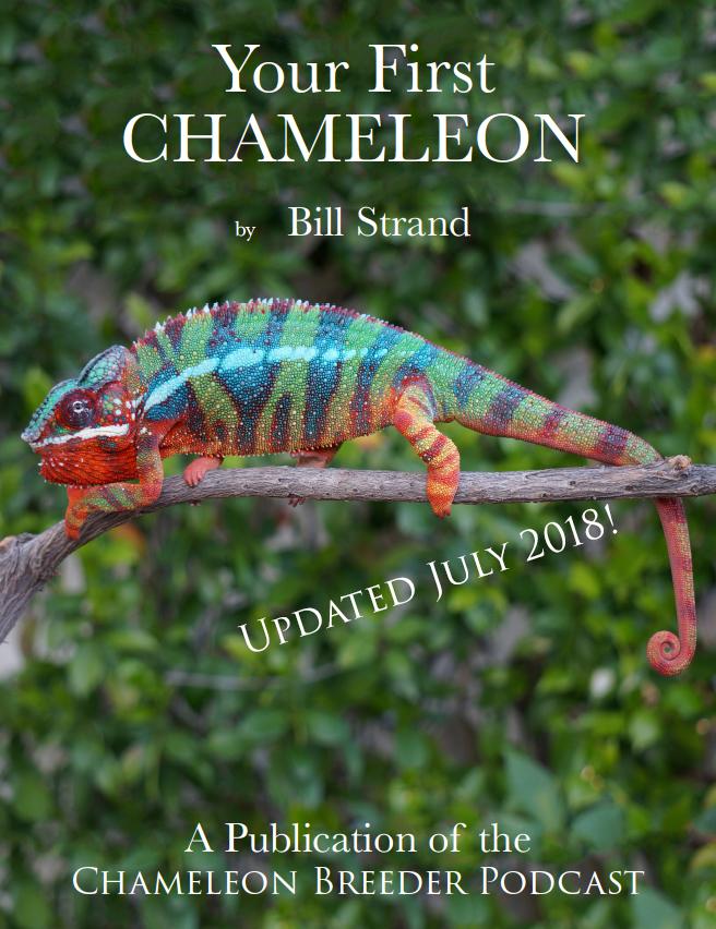 Chameleon Basics