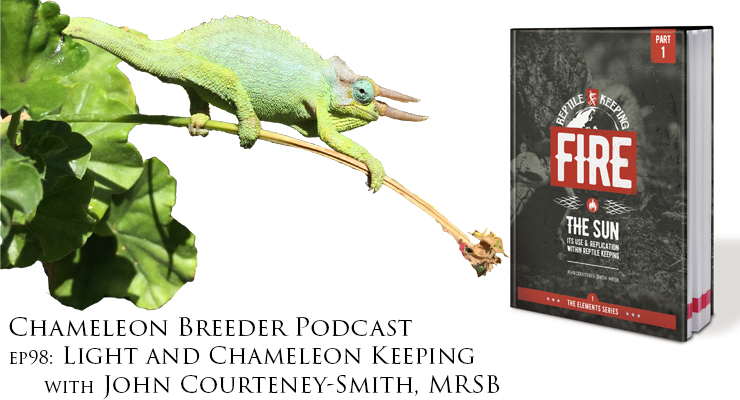 Light and Chameleon Keeping with John Courteney-Smith
