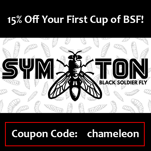 Symton BSF