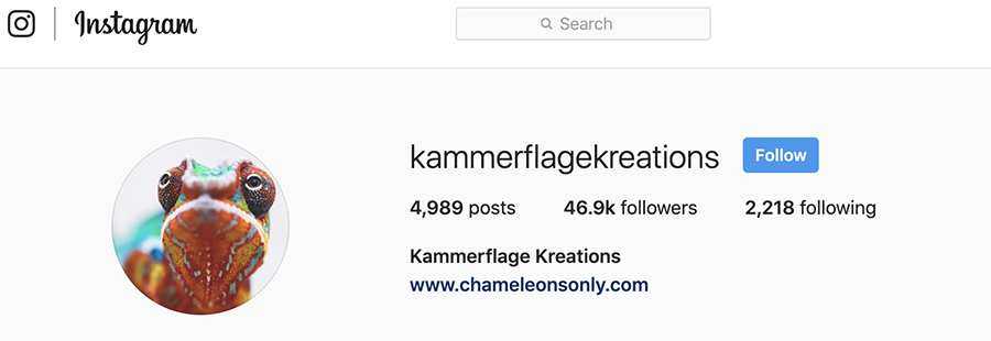 Kammerflage for Instagram